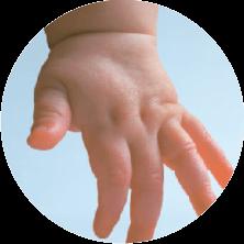 hand stem cells